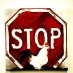 Stop Chicken Crossing